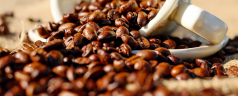 Nederlandse Koffie is de Lekkerste
